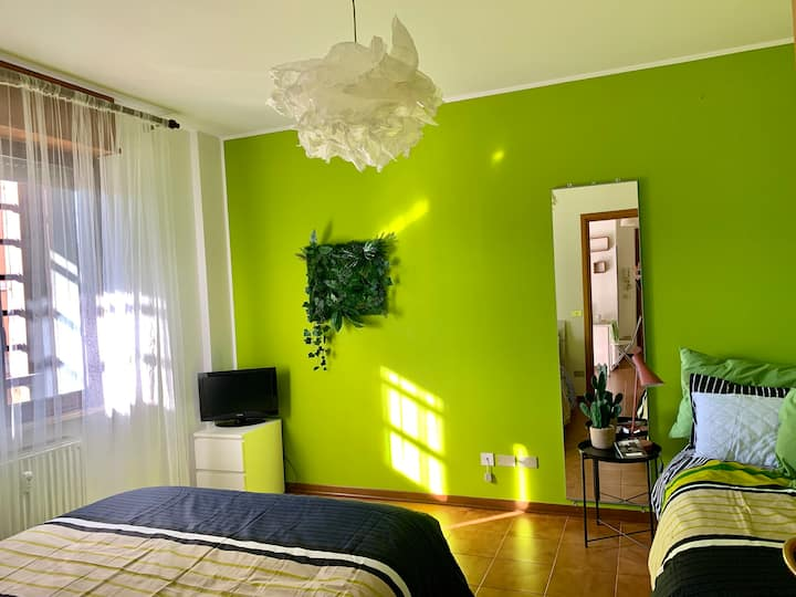 Green Home. Grazioso e luminoso mini in Centro