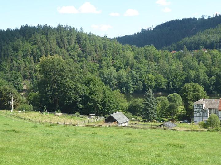 Ludwigshütte