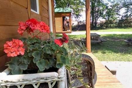 Kim's Cabins #4 - new, modern cabin sleeps 7