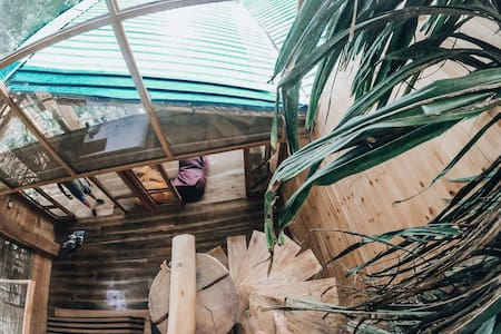 Ella Treehouse, Duplex6