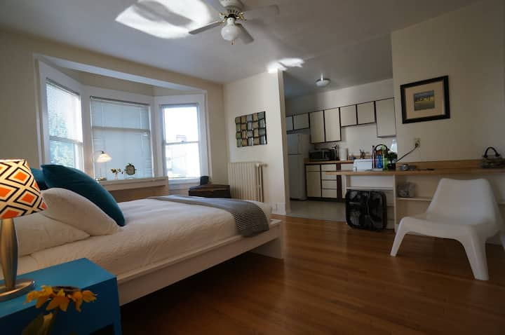 Bright Apartment in Capitol Hill-Perfect for WFH