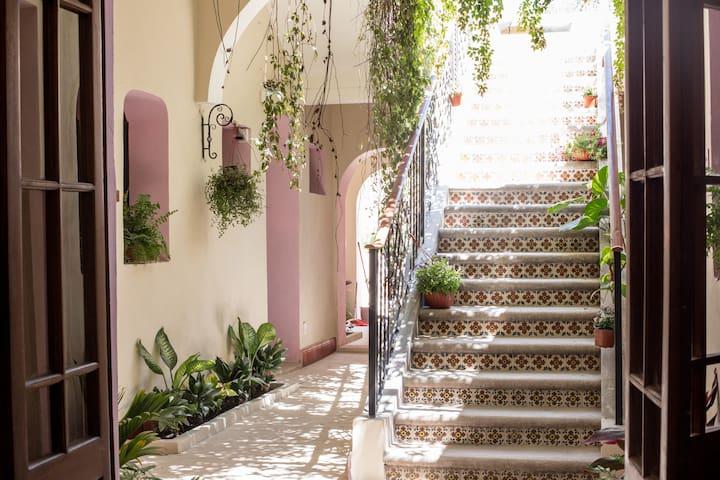 K&N, Hotelito Cultural en el Centro Histórico (#4)