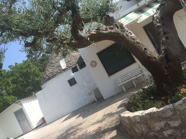 TRULLO DEI SOGNI - 2 bedrooms - Province of Brindisi - House