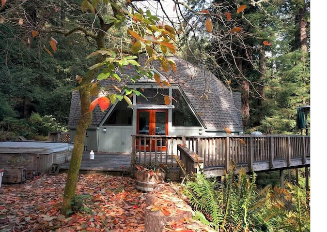Geodesic Dome in the Redwoods - Cazadero - House