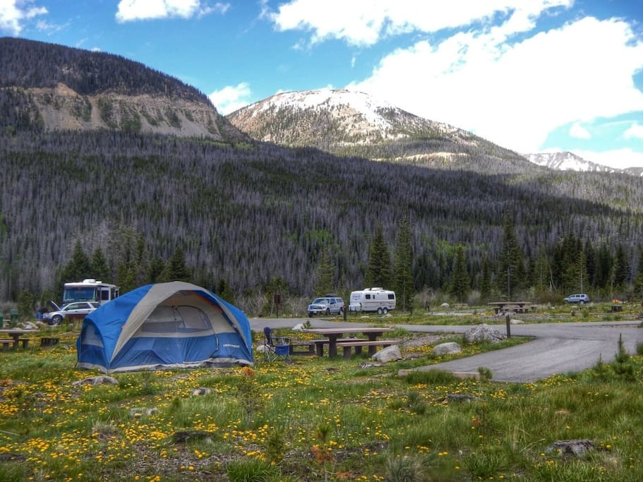 Enjoy the beauty of any campsite in the region!