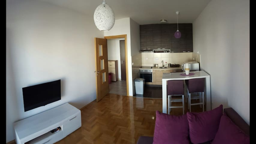 Charming fully equipped apartment! - Podgorica - Huoneisto