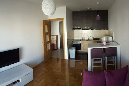Charming fully equipped apartment! - Podgorica