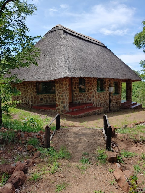 African bush experience