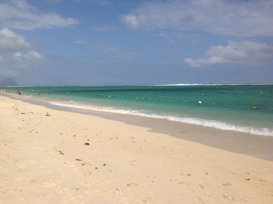 White Sandy Beach and Blue Turquoise sea