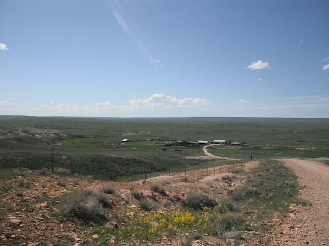 We offer tours of the ranch (Tour availability may become subject to the time or season of the year, weather and conditions. see the space description for details).