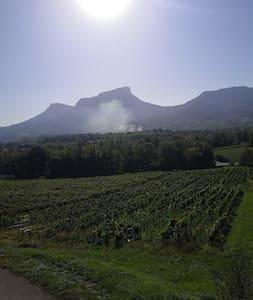 STUDIO avec magnifique vue au milieu des vignes