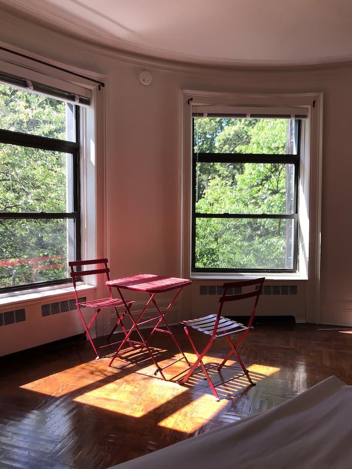 Gorgeous Spacious UWS studio with Calming Views