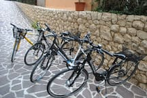 bikes to be used by our guest