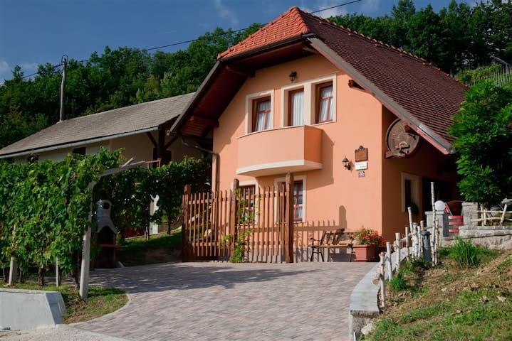 Vineyard cottage Tramte - Škocjan - บ้าน