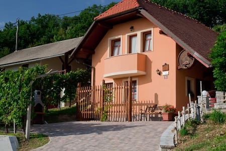 Vineyard cottage Tramte - Škocjan - Hus