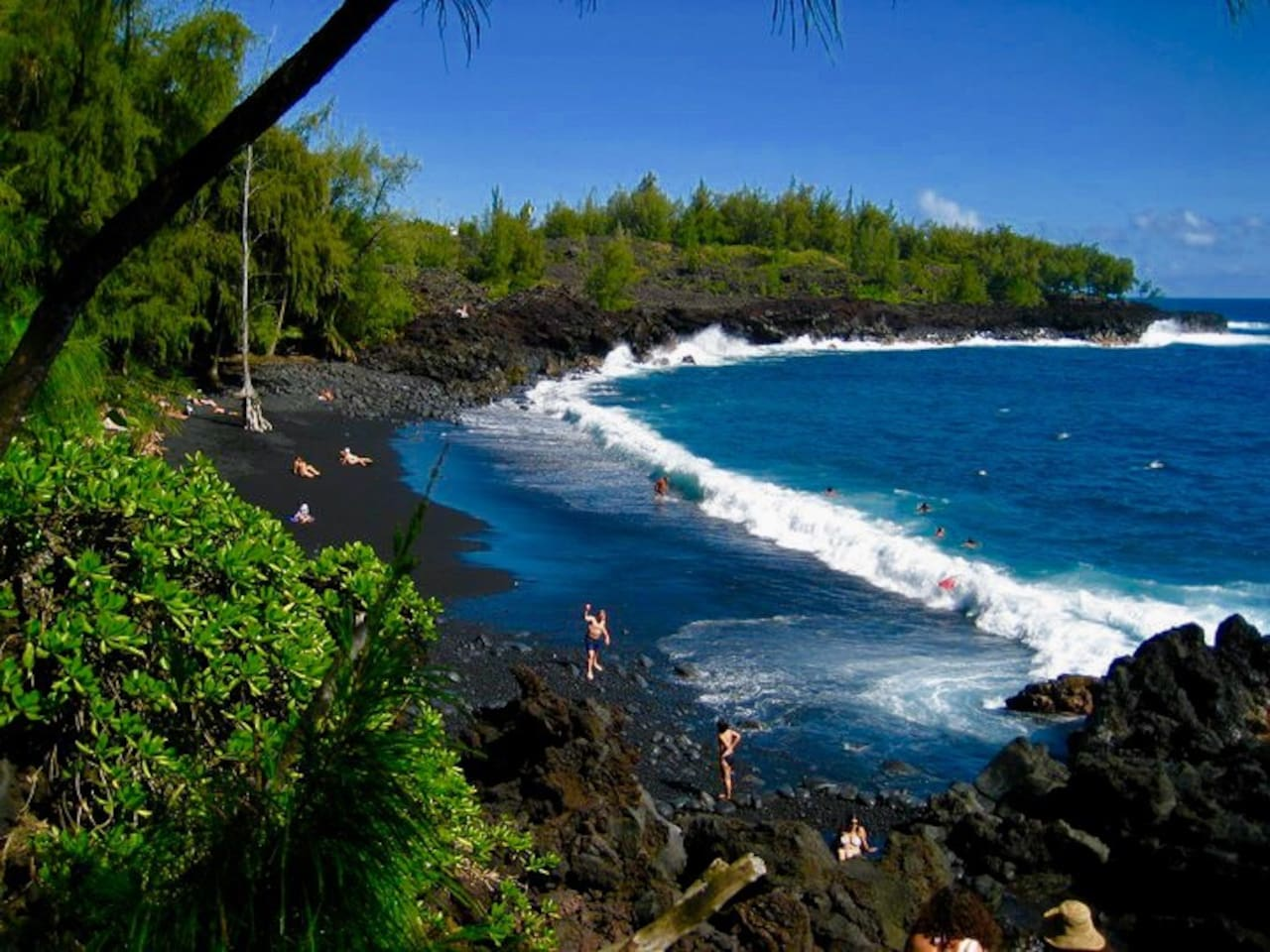 Welcome to Da BIG island of HAWAIIs Be loved southeast Corner johnny  Makalani Orchid Farm Retreat it is surrounded by lush heavily laden mango Forests with  Coconuts and 50 ft avocado Trees Enjoy the Nearby Secluded Black sand keheana Nudist Beach