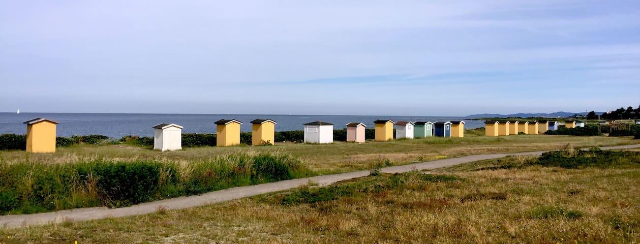 Strandnära radhus i Viken