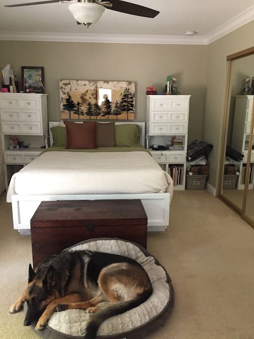 Master Bed - Shepard not included