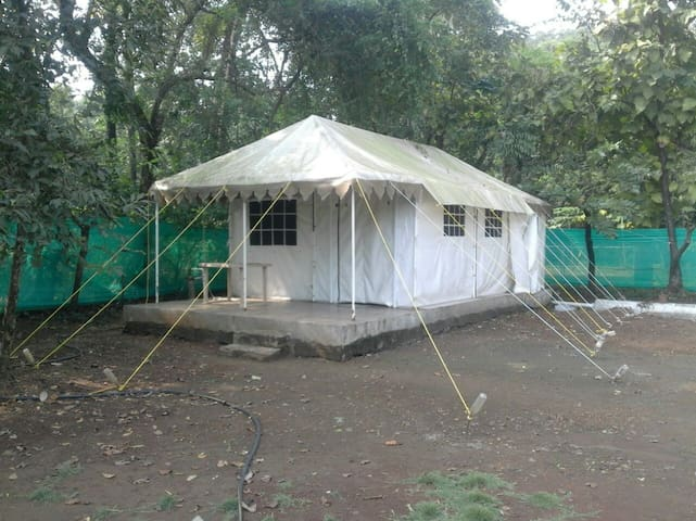 Kashid Kamath Alibag Beach - Homely AC Tents