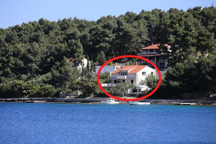 Studio flat near beach Lumbarda, Korčula (AS-4446-a)