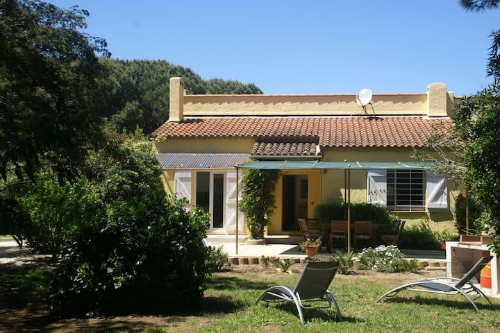 Vacation in beautiful surroundings, near the beach and Saint-Tropez (5 km)