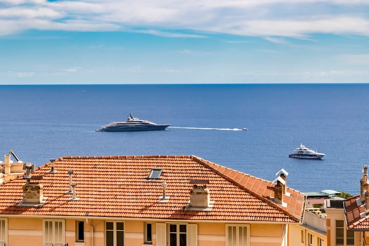"""Had to work in monaco for a week. The apartment is perfectly located. The photos are totally true to the place. This is a great home away from home."" OLIVIER July"