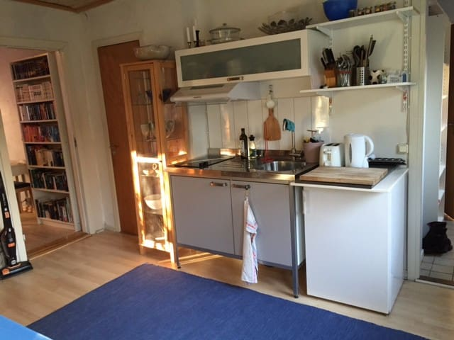 Small fridge, freezer, a cooktop/hob, and a sink.