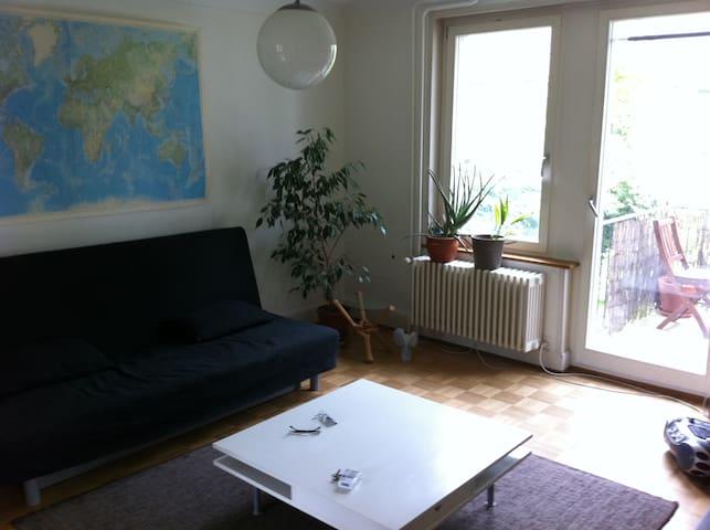 friendly apartment near SBB railstation