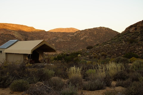 Brandrivier Accommodation: Meerkat unit
