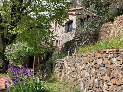 La Petite Clède cévenole on the Hérault