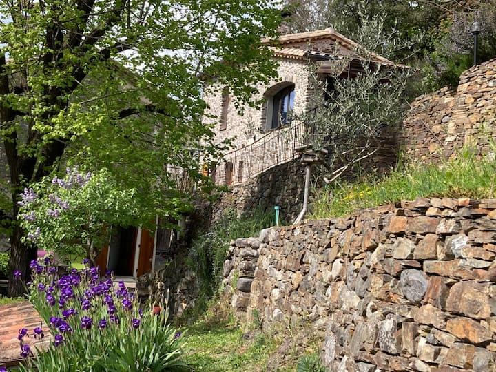La Petite Clède cévenole au bord de l'Hérault