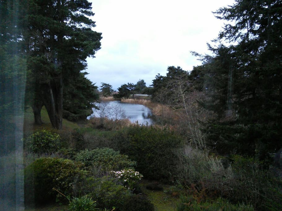 View of Pomo Lake from the house