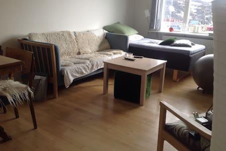 Fantastisk udsigt - Ilulissat - Apartment