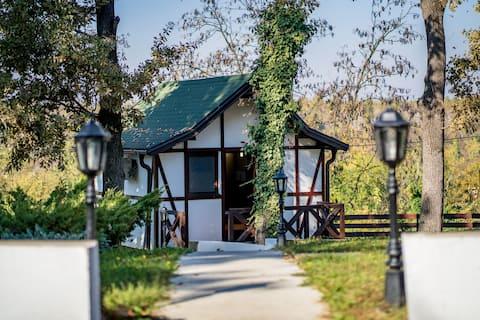 Piękny Bungalow Studio z Mountain View 6