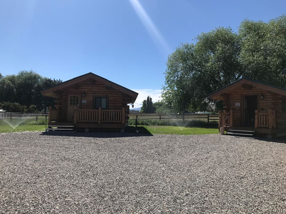 The Ranch House and the Waterhole are looking beautiful with lots of grass around them!!