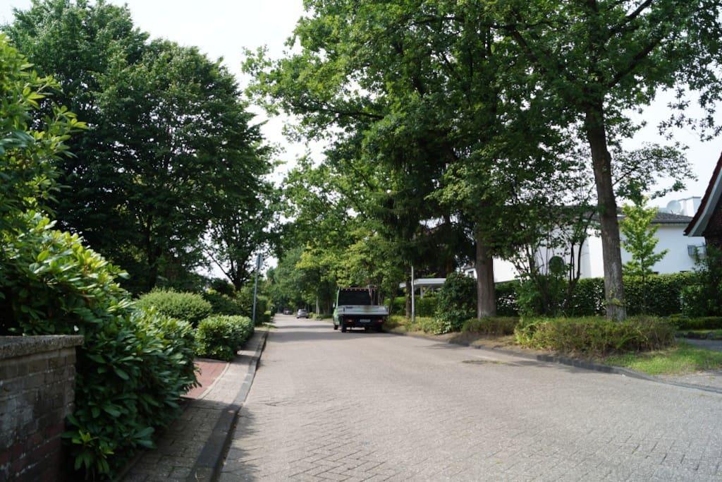 Der Wechloyerweg, eine ruhige Stichstraße zum Haarenniederwanderweg