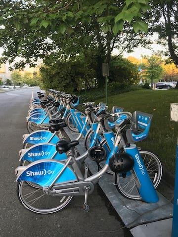 Bike rental: 1 minute walk