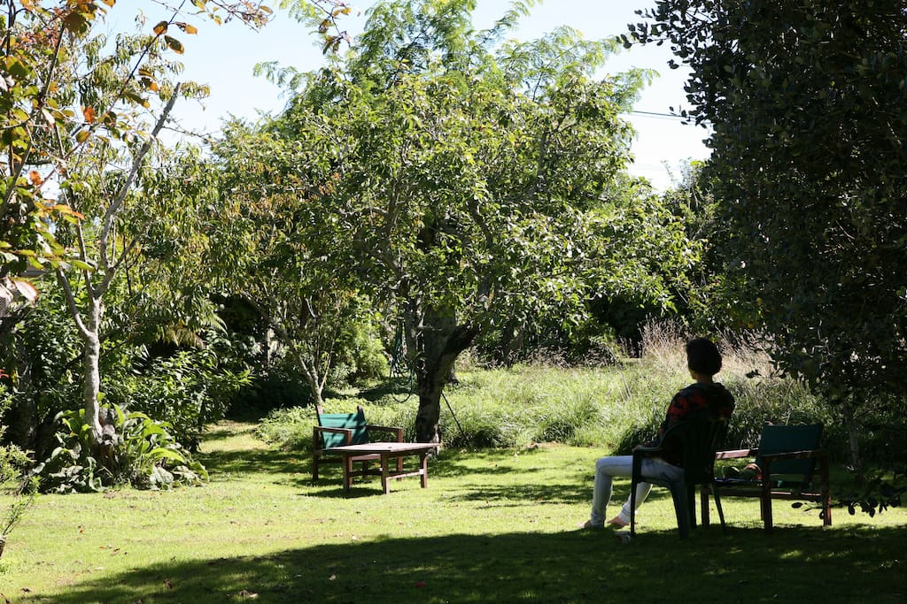 Relax year-round in the 1 acre garden