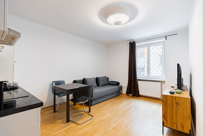Newley renovated apartment in the city center