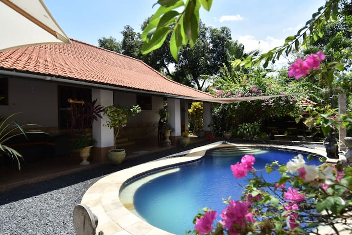 Lovely private villa in Lovina with swimming pool!