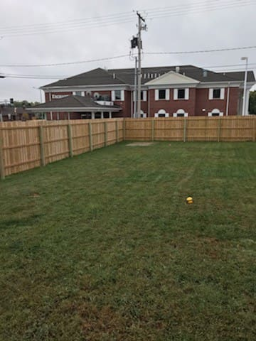 Backyard with privacy fence