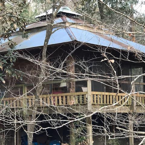 Fallen Tree Entire House (pet-friendly) near NOLA