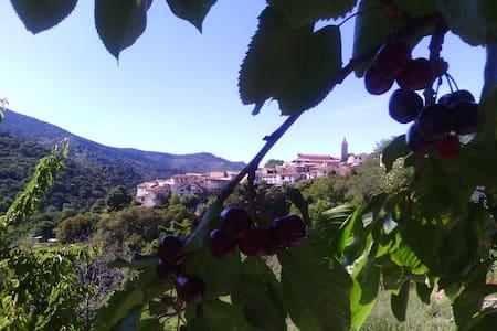 La Nohemienne, dalla montagna al fiume - Gadoni - Byt