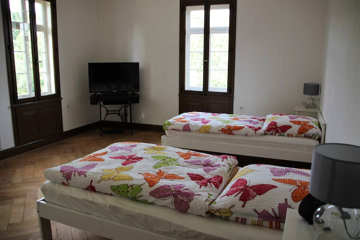 Schlafzimmer mit 2 Betten und TV