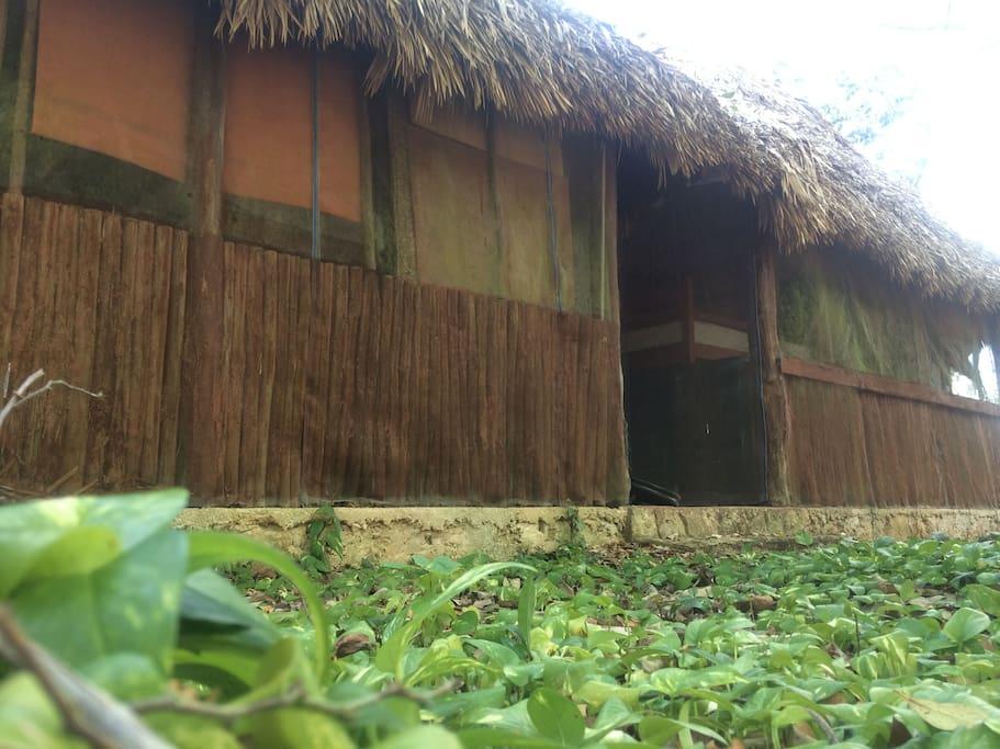 Nuestras cabañas rústicas tienen vista directa al cenote