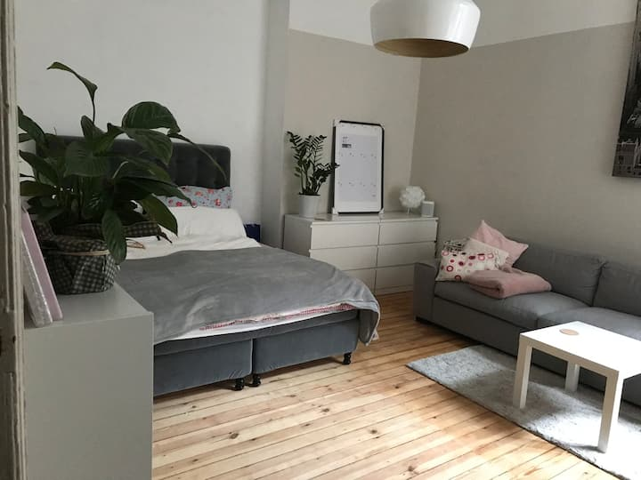 Cozy, comfy and well located apartment in Berlin