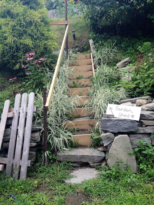 View of steps from lower graden patio that lead to Upper garden and G-shed