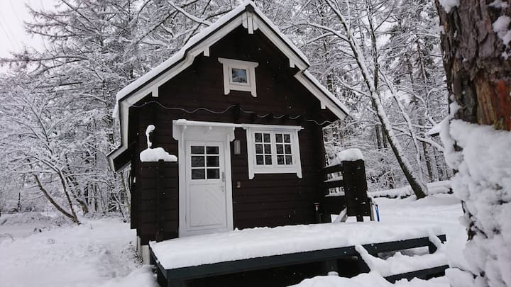 Beaver Cabin with 4WD CAR