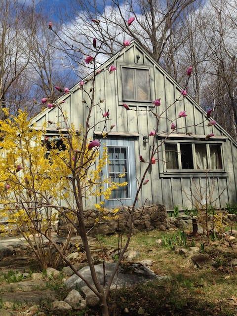 Art-Funk Cabin in the Woods is now 420-friendly!