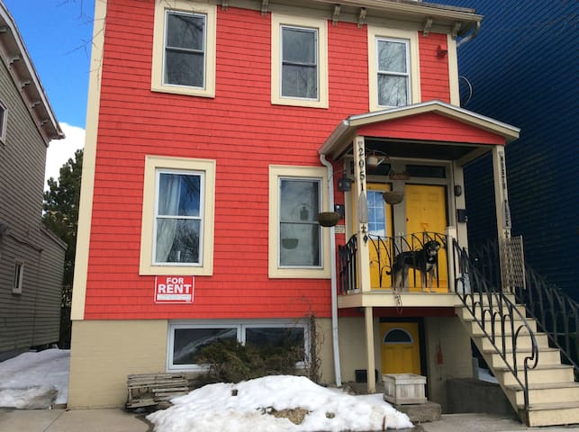 Charming downtown pad on the park - Halifax - Apartment